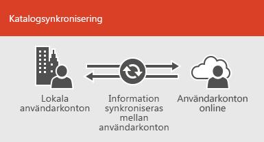Använd katalogsynkronisering för att hålla lokal information synkroniserad med information för onlineanvändarkonton