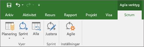 Skärmbild av menyfliksområdet i Project som visar fliken Agile-verktyg
