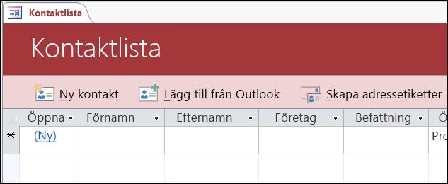 Kontaktlistformulär i kontaktdatabasmallen i Access