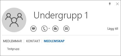 Skärmbild av fliken Medlemskap för Outlook-kontaktkortet för gruppen Sub Group 1, som visar att Sub Group 1 är en medlem i gruppen Test Group.