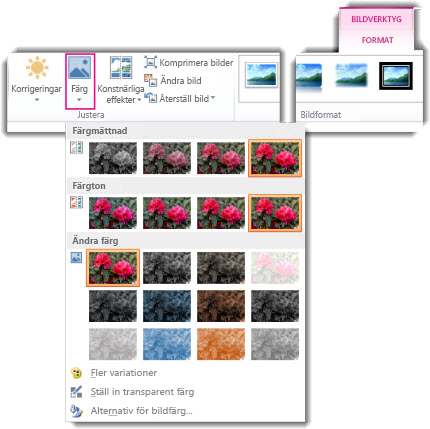 Färgknappmeny öppnasfrån fliken Bildverktyg Format
