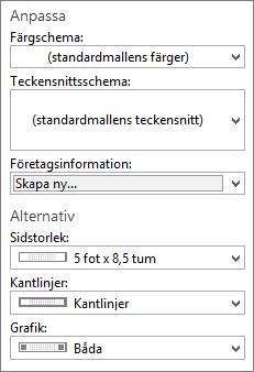 Skärmbild av val för Anpassa och Alternativ i Publisher.