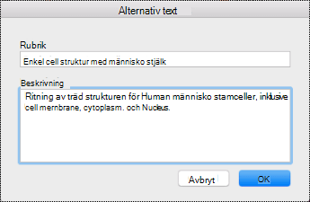 Dialog rutan alternativ text för OneNote på Mac.