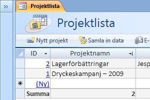 Projektens databasmall