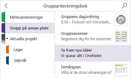 Avsnittsfönstret och sidlistan med förhandsgranskning av sidor