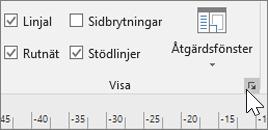 Skärmbild av verktygsfält för Linjal, Rutnät och Stödlinjer med ikonen Alternativ markerad