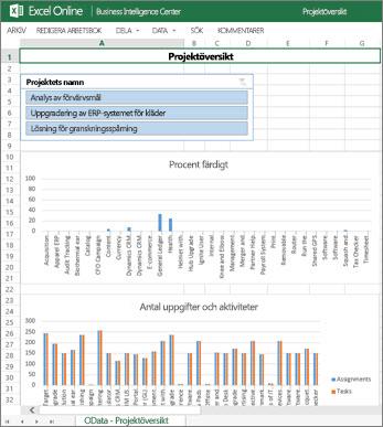 Arbetsboken Projektöversikt ger fullständig information om uppgifter för dina projekt