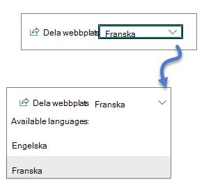 Listruta för språk