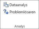 Knappen Dataanalys i gruppen Dataanalys