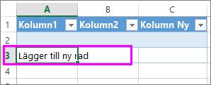 Lägg till en ny tabellrad genom att skriva data i raden under den sista tabellraden