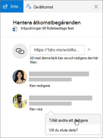 Skärmbild av avsnittet Delning i fönstret Information för en delad fil.