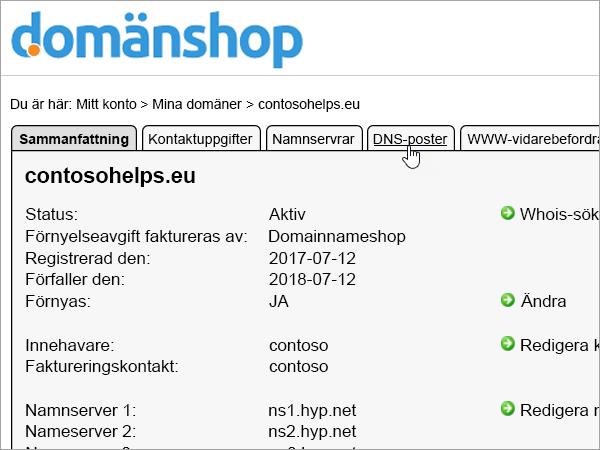 DNS-posterna på fliken i Domainnameshop
