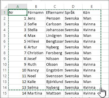 Excel-kalkylblad med markerat område