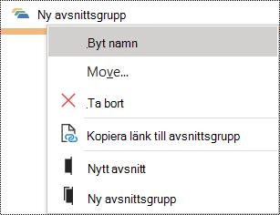 Byta namn på en avsnittsgrupp i dialogrutan OneNote för Windows