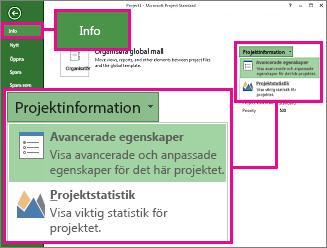 Menyn Projektinformation med Avancerade egenskaper markerat