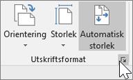 Skärmbild av verktygsfältet Utskriftsformat med Automatisk storlek markerat