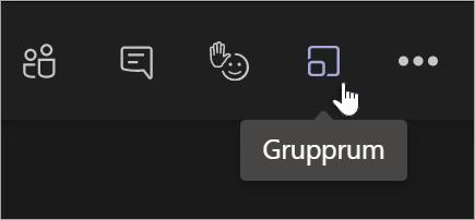 Ikonen Grupprum