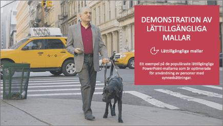 En man med nedsatt syn går med en ledarhund