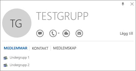 Skärmbild av fliken Medlemmar för Outlook-kontaktkortet för gruppen Test Group. Sub Group 1 och Sub Group 2 visas som medlemmar.