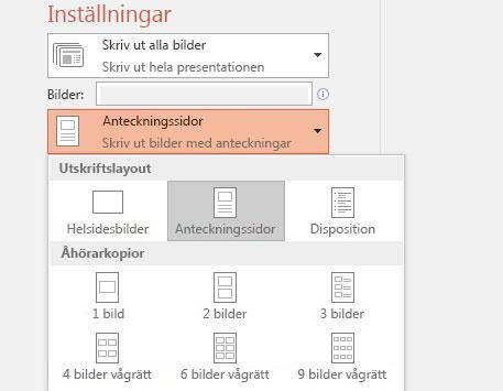 skärmbild av alternativ för att skriva ut anteckningar