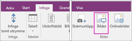Skärmbild av knappen Infoga bilder i OneNote 2016.