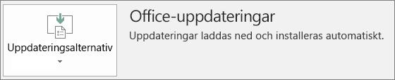 Skärmbild av Office-uppdateringar i Office-appkonto