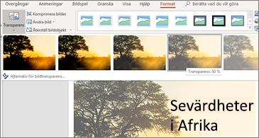 Bild med alternativ för genomskinlighet på fliken Format