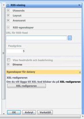 Verktygsfönstret för RSS-visning