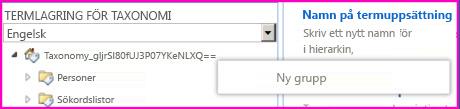Skärmbild av navigeringsfönster i verktyget för hantering av termlagringsplats med menyposten Ny grupp vald