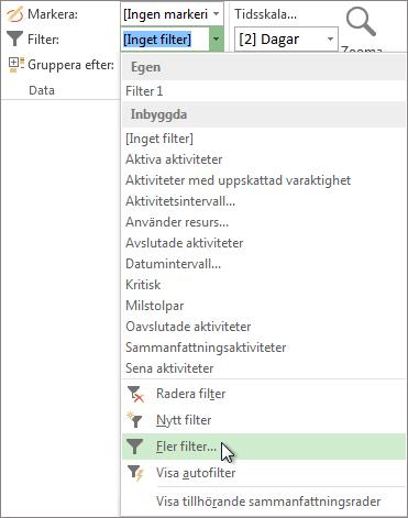 Menyfliksområdet i Project, visar hur du skapar ett anpassat filter.