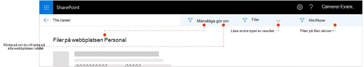 Skärmbild av sökresultat sidan har zoomat in högst upp i resultatet där en sökväg visa resultaten kommer från webbplatsen. Pekare med filtren.