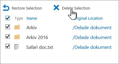Papperskorgen på andra nivån i SharePoint 2016 med alla objekt markerade och Ta bort markerat