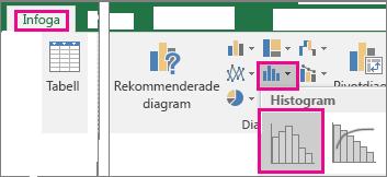 Kommando för histogram som nås via knappen Infoga statistiskt diagram