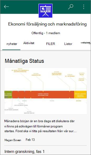 Skärmbild av fliken diskussionsgrupper på en gruppwebbplats