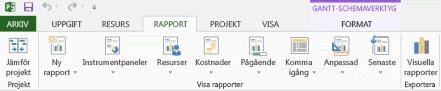 Fliken Rapport i Project 2013