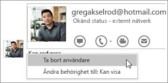Skärmbild av Sluta dela-alternativen i OneNote 2016.