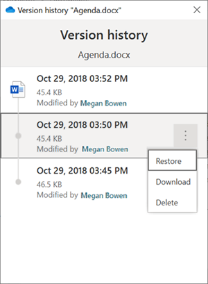 บานหน้าต่างประวัติรุ่น Windows Explorer