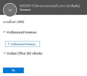 เลือกการตั้งค่า DNS