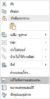 เมนูข้อความแสดงแทนสำหรับรูปภาพของ Excel Win32 Edit