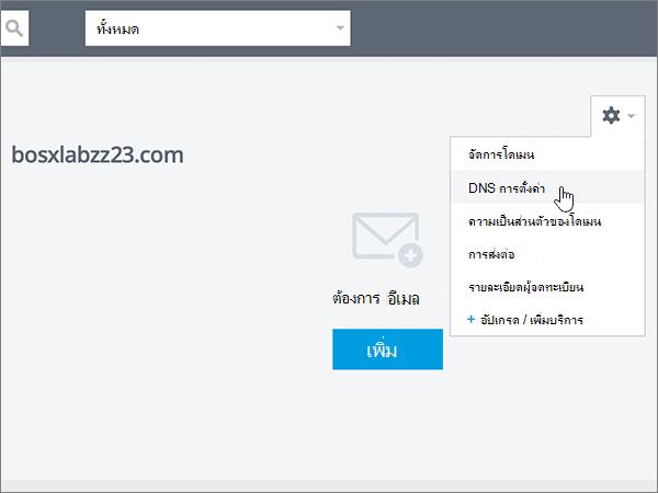 คลิก การตั้งค่า DNS ในรายการ