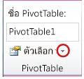 กลุ่ม PivotTable บนแท็บตัวเลือกที่อยู่ด้านล่างเครื่องมือ PivotTable