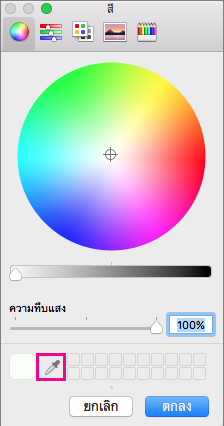 เครื่องมือ หลอดดูดสี ในกล่อง สี