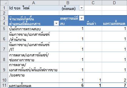 ข้อมูลสรุปของข้อมูลการตรวจสอบในตาราง Pivot