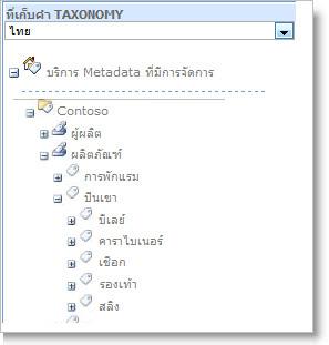การจัดการ Metadata