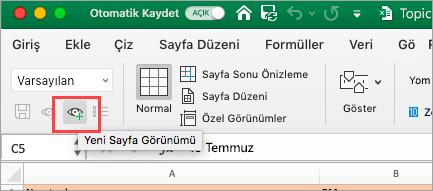 Excel Elektronik Tablosunu gösterir