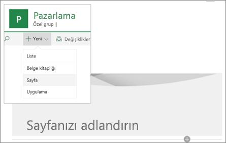 Yeni Sayfa