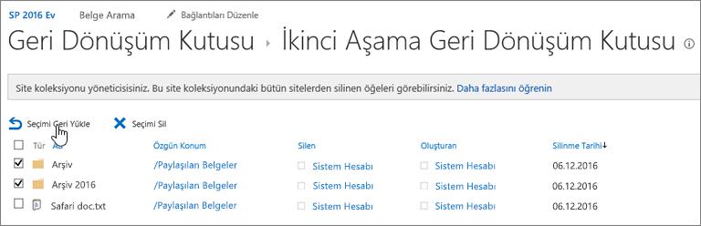 SharePoint geri yükle düğmesinin vurgulandığı ikinci düzey geri dönüşüm