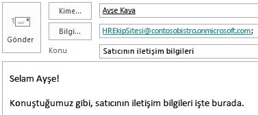 Bilgi alanına site posta kutusu eklenmiş olarak e-posta iletisi.