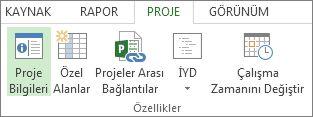 Proje Bilgileri düğmesinin resmi