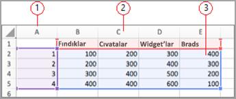 Excel'de veri alanları